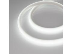 Образец Лента RTW-5000PWT 24V White6000 13mm (2835, 180 LED/m, High Temp)